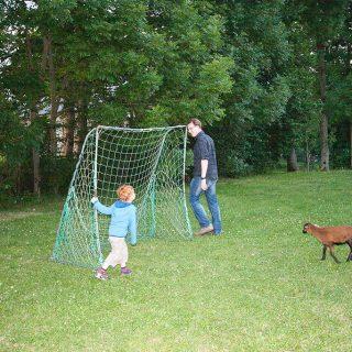 Fussball spielen mit einem Schaf